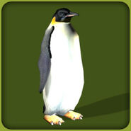 Emperor Penguin (Blue Fang)