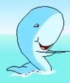 Jumpstart firstgrade beach whale