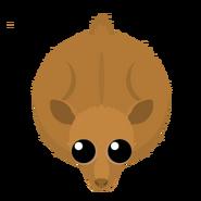 Mopeio Doe