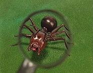 Nemets the Ant