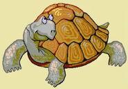 Turtle-erinv