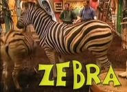 Zoboomafoo Bürchelle's Zebras