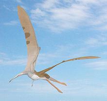 220px-Cearadactylus.jpg