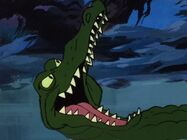 Alligator NTH