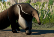 Giant-anteater-planet-zoo