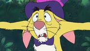 Shocked rabbit