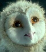 Eglantine-legend-of-the-guardians-the-owls-of-gahoole-57 5