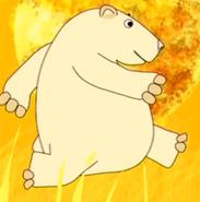 Funny-animals-2-polar-bear