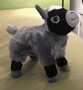 Otis the Pygmy Goat