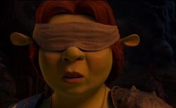 Princess Fiona blindfolded by HeroMan655 on DeviantArt.jpg