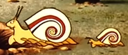Snails-goliath-2-1960