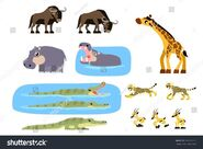 Stock-vector-african-animals-vector-containing-girrafe-gazelle-gnu-wildebeest-crocodile-hippopotamus-and-306233123