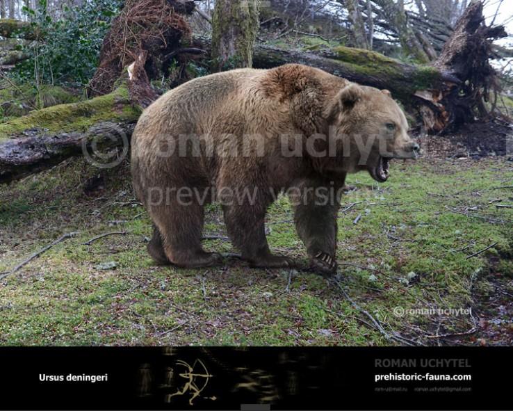 Deninger's Bear