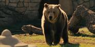 WBAZ Bear