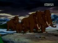CPatP Mammoths