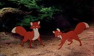 Fox-and-the-hound-disneyscreencaps.com-8469