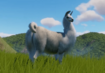 Llama-planet-zoo