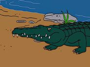 Simpsons Saltwater Crocodile