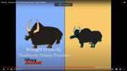 Stanley Wild Yaks and Domesticated Yaks