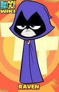 084499bb8114bece89f1e416aeca3d83--raven-teen-titans-go-ravens