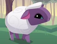Animal Jam Sheep