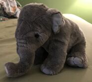 Mable the Asian Elephant