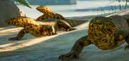 Planet Zoo Monitor Lizards