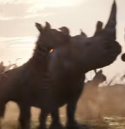 TLK White Rhinoceros