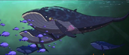 TWT Movie Whale