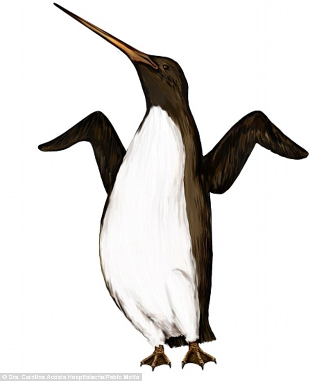 Colossus Penguin