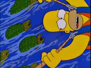 Homer and Snapping Turtles
