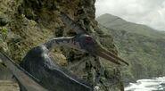 Pteranodon (WWD)