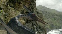 Pteranodon (WWD).jpg