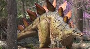 Saint Louis Zoo Stegosaurus