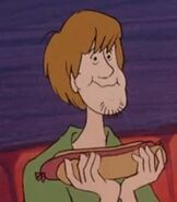 Shaggy Rogers in The Scooby Doo Show