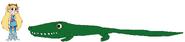 Star meets American Alligator