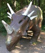 Styracosaurus-boraszoo