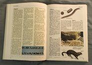 The Kingfisher Illustrated Encyclopedia of Animals (98)