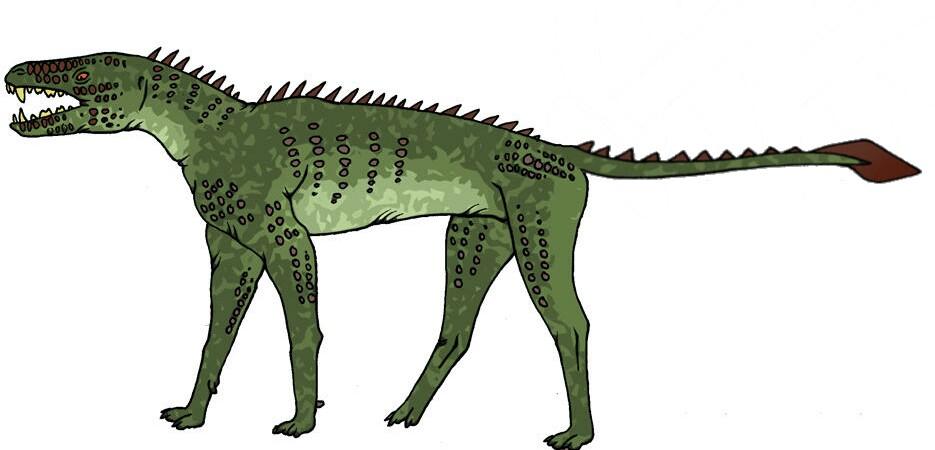 All Todays Thylacine