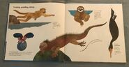 Flying Frogs and Walking Fish (6)