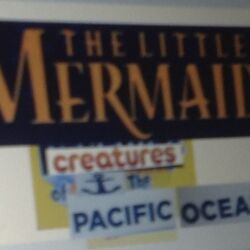 The Little Mermaid Creatures of the Pacific Ocean
