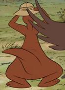 Kanga running around 6