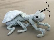 Rocky the Praying Mantis