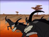 TRAoBQ Sable Antelope