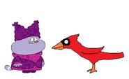 Chowder meets Northern Cardinal