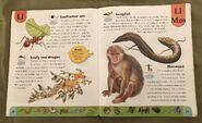 Weird Animals Dictionary (12)