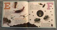 Bugs A-Z (3)