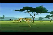 Cheetah (Wild Kratts)