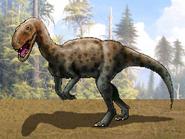 Dm megalosaurus