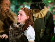 Dorothy starts to get teary-eyed while saying goodbye to her friends